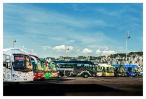 Trasporto stradale